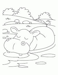 Small Picture Hippo Coloring Pages Coloring Home
