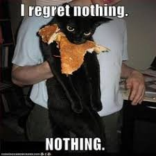 Animals on Pinterest   Funny Animal Memes, Funny Animal and Animal ... via Relatably.com