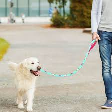 <b>Fashion Dog</b> Leash with Mesh Padded Handle Pet Walking Lead ...