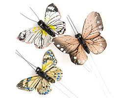 <b>Beautiful Butterfly Decorative</b> Set – My Wedding Favors