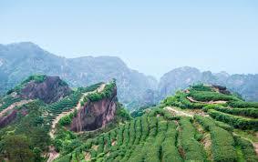 Чай <b>Да Хун Пао</b> или Большой Красный Халат