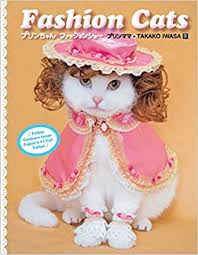 Fashion Cats (9781576875575): Iwasa, Takako ... - Amazon.com