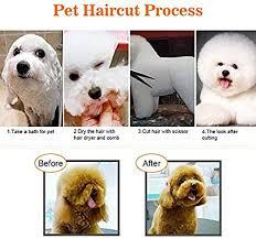 <b>Pet</b> Grooming Scissors Kit, <b>7Pcs Dog Cat</b> Hairdressing Shears Set ...