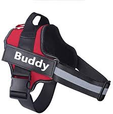 Personalized Dog Harness NO Pull Reflective ... - Amazon.com
