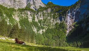 Image result for ảnh núi đồng bò