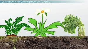 soil erosion effects prevention video lesson transcript what is topsoil definition composition uses
