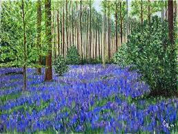 """Résultat de recherche d'images pour """"images forêt au printemps"""""""