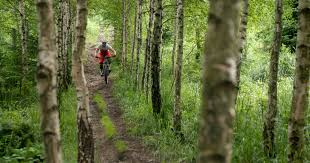<b>Enduro</b> Trails in Bielsko Biala - €30.00   <b>Traildeer</b>