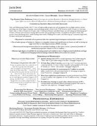 ideas about professional resume examples   resume    resume for account executive  looking for a great professional profile resume template
