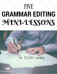 images about essay mini lessons for middle school and high        images about essay mini lessons for middle school and high school english on pinterest   high school students  high school english and student