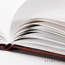 areo hotah descriptive essay