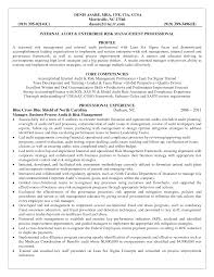 resume examples risk management resume samples risk management   resume examples risk management resume samples business process audit and risk management experience