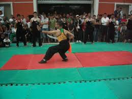 Arts martiaux: Tahmi appelle les athlètes à se structurer