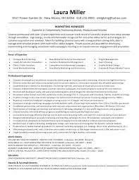 manager sample resume india  seangarrette c ager