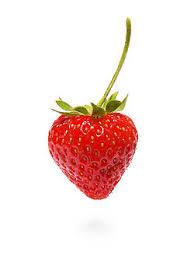 """Résultat de recherche d'images pour """"la fraise"""""""