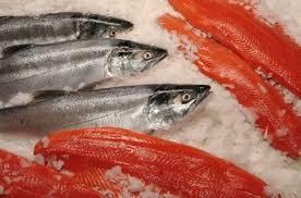 Resultado de imagen para fotos de pescados no congelados