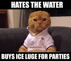 The 10 Best Preppy Cat Memes - Cats vs Cancer via Relatably.com