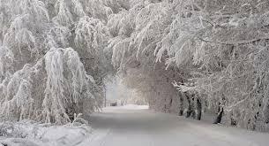 Картинки по запросу Снег в Украине