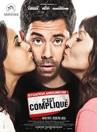 Situation amoureuse : C'est compliqué (2014)