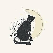 <b>Evil Cat</b> Images | Free Vectors, Stock Photos & PSD