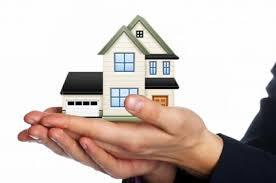 teammolzan real estate agency