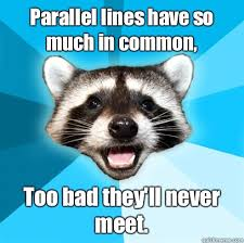 Parallel lines have so much in common, Too bad they'll never meet ... via Relatably.com