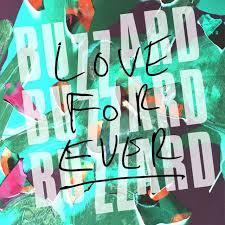 Buzzard Buzzard Buzzard – <b>Love Forever</b> Lyrics | Genius Lyrics