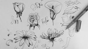 easy e2 80 93 pencil art drawing flower tutorial picture izmq pediatric office design art drawing office