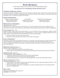 Free Resume  consultant resume sample   Kaii co Infovia net