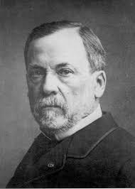 Louis-Pasteur - Louis-Pasteur
