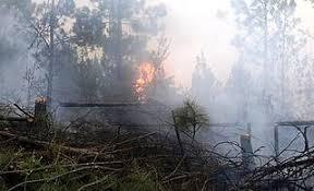 Resultado de imagen para fotos de incendios en santiago rodriguez en la cordillera central
