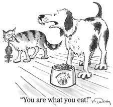 Ξέρεις αγαπημένη μου γατούλα...