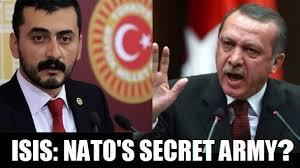 「NATO・トルコ 」の画像検索結果