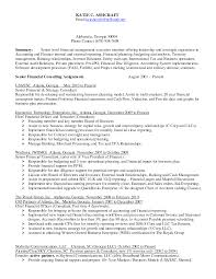 internal auditor resume tips resume for internal auditor internal auditor resume samples cover reentrycorps isabellelancrayus fascinating administrative manager resume example
