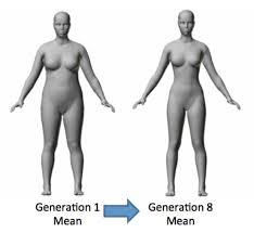 is there really a single ideal body shape for women viralbuzz today first selection targeted waist size itself rather than waist hip ratio no statistical model involving hip size either on its own or in waist hip ratio