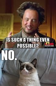 NO! | Grumpy Cat | Know Your Meme via Relatably.com
