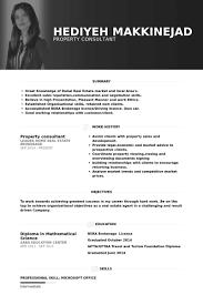 property consultant resume samples junior travel consultant resume