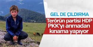HDP'den Eren Bülbül mesajı