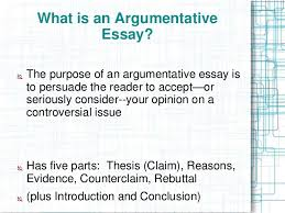 format for an argumentative essay The years that money meant everything to Americans
