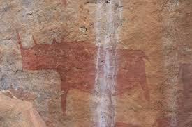 images?q=tbn:ANd9GcSgIcLxpP5MJMN5S68c53jUyT6UX31 ScBikSX04WOvLaHFeG3l San Bushmen People, The World Most Ancient Race People In Africa