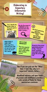 elaborating in expository informative writing infographic elaborating in expository informative writing infographic