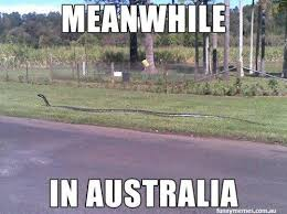Australia - The big brother next door - Bananas Travel via Relatably.com