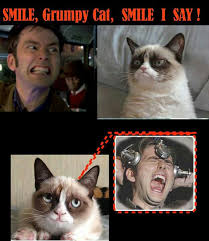 Grumpy Doctor on Pinterest | Grumpy Cat, Doctors and Doctor Who via Relatably.com