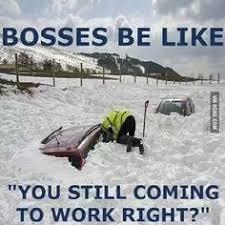Winter memes on Pinterest | Meme, Grumpy Cat and Winter via Relatably.com