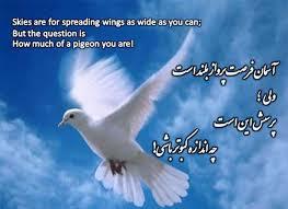 Image result for پیام های دینی و اخلاقی