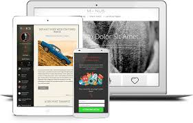 Thrive Themes Review  WordPress Theme That Kicks Genesis      And Thesis      Ass  best wordpress theme