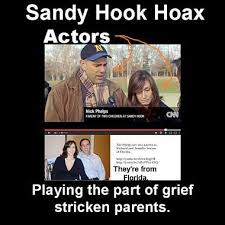 The Truth About Sandy Hook | The Tin Whistle via Relatably.com