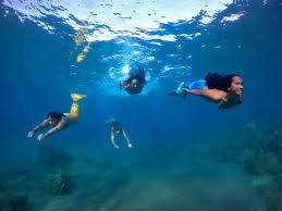 Hawaii <b>Mermaid</b> Adventures: <b>Mermaid</b> Swimming Lessons On Maui
