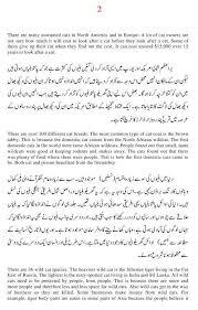 essay on cats in urdu  poc essay on cats in urdu
