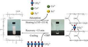 The removal of uranium using novel temperature sensitive urea ...